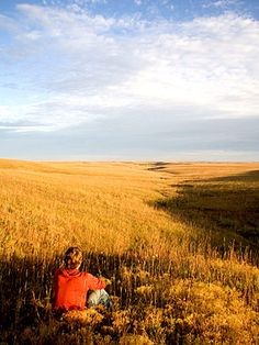 Kansas: Tallgrass Prairie National Preserve.  This looks just like home on the prairies of southwestern Minnesota.