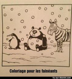 Images Fun N°4324 - Coloriage pour les fainéants