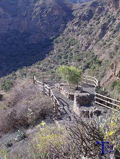 Mirador en la Caldera de Bandama #Spain #CanaryIslands #GranCanaria