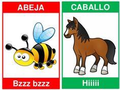 Spanish Lesson Plans, Spanish Lessons, Spanish Words, Spanish Language Learning, Pre Writing, Memory Games, Scooby Doo, Kindergarten, Homeschool