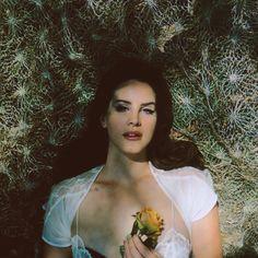 "officialneilkrug: ""Honeymoon with Lana Del Rey Photograph by Neil Krug http://instagram.com/neilkrug """