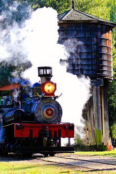 Shay at Roaring Camp and Big Trees Railroad