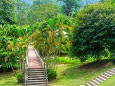 voyage en Malaisie insolite