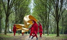 Milton Keynes' cathedral of trees provides both the inspiration and location for my latest participatory dance work, explains Rosemary Lee International Festival, Milton Keynes, Family Events, Dance Photography, Vaulting, Cathedral, Ambition, Scale, Inspiration