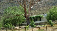 Hangnes with jacuzzi - Boskloof Swemgat Sleeper Couch, Bathroom Bath, Double Beds, Jacuzzi, Cottage, Places, Cape, Beautiful, Full Beds