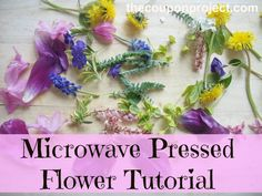 Mother's Day is approaching and if you're looking for something easy, inexpensive, and beautiful to make with the kids, I have an idea for you: pressed flowers! I know what you're thinking – Mother's Day is this Sunday and pressing flowers usually requires time. Well did you know that you can actually press flowers in […]