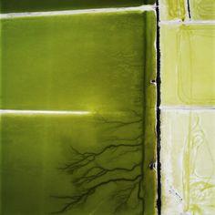 David Maisel :: Photography :: Terminal Mirage