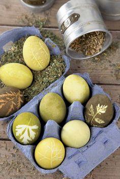 green eggs, no ham Easter Egg Dye, Easter Egg Crafts, Diy Osterschmuck, Easter Wishes, Easter 2020, Diy Easter Decorations, Egg Art, Easter Recipes, Easter Baskets
