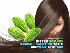 Karela is a great home remedy for your hair. Besides being beneficial for skin and health, Karela juice is also effective in treating hair problems and promoting longevity. It is beneficial for hair in the following ways: http://www.dwarkamandi.com/blog/buy-fresh-karela-online-in-delhi/