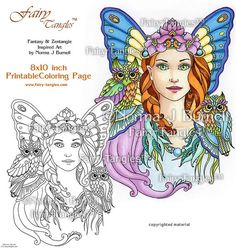 Fairy and Owls - Fairy Printable Coloring book Sheets by Norma J Burnell Fairies to color Fantasy Coloring Book Pages Adult Coloring pages