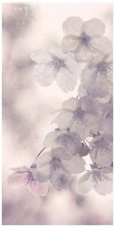 59 Best Gratefulಌ images | Beauty, Fall season, Flowers