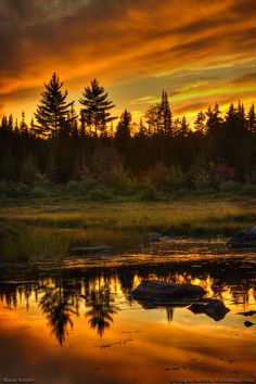 Maine Sunset on West Shirley Bog. West Shirley Bog is located in north central Maine in a little village called Shirley Mills just south of Greenville, part of Piscataquis County. This is the twilight period just after sunset. Beautiful World, Beautiful Places, Beautiful Pictures, Beautiful Sunset Images, Nature Pictures, Paris 11, All Nature, Flowers Nature, Amazing Nature
