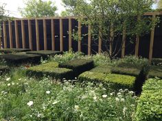 christopher bradley-hole / 2013 rhs chelsea daily telegraph garden