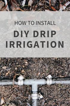 How to Install DIY Drip Irrigation | Home for the Harvest | www.homefortheharvest.com Hydroponic Farming, Hydroponic Growing, Aquaponics System, Diy Hydroponics, Aquaponics Plants, Permaculture, Garden Types, Garden Watering System, Watering Plants