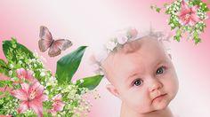 Baby photos, motylki