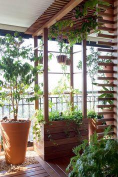 Jardim pequeno em varanda. Paisagista: Paula Galbi.  Fotografia: Pedro Abude…