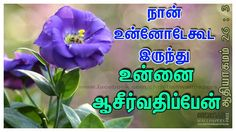 Tamil Christian Wallpapers: I will be with thee and will bless Bible Vasanam In Tamil, Tamil Bible Words, Bible Verses About Friendship, Friendship Quotes, Jesus Quotes, Bible Quotes, Bible Words Images, Good Friday Images, Blessing Words