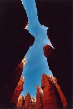 ~ Looking Up ~ Bryce Canyon National Park, Utah....