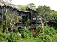 Shimba Hills Lodge, Kenya. We stayed in the outside bandas here.