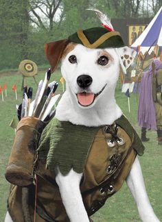 WISHBONE!! I use to own every single stuffed wishbone there was.. What a good show.. And what a good boy!!!