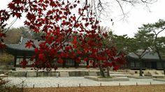 서울 창경궁