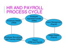 In House Payroll Software in Delhi NCR >> It is altering into various and very difficult to handle employee linked data and Human Resource jobs like leave attendance management and legal compliance, especially if your business is upward. >> #N2NSystems #PayrollSoftware #PayrollManagementSystem #OnlinePayrollSoftware #PayrollSoftwareinDelhi #PayrollSoftwareinIndia #OnlinePayrollSoftwareinIndia
