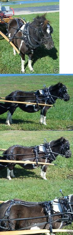Other Driving Equipment 13376: Ultimate Mini Miniature Horse Biothane Parade Harness -> BUY IT NOW ONLY: $499.0 on eBay!