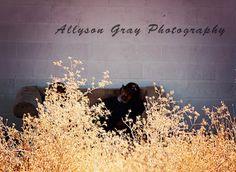 Allyson Gray Photography