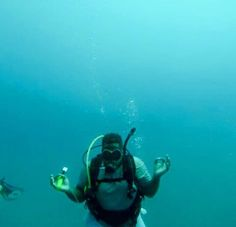 RCI's PADI diving courses apply performance based learning meaning that students' progress to the next level after meeting specific requirements. Diving School, Diving Course, Padi Diving, Underwater, Zen, Under The Water