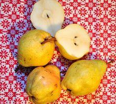 Goldrich | Zdravăn Pear, Plant, Bulb