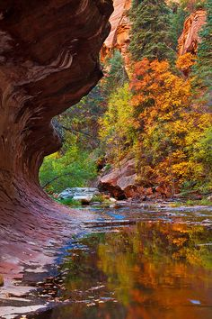 Oak Creek Canyon, Sedona - Been there and it is as beautiful as it looks!!!!  One of the best vacations as I was with my Best Friend Kelly!