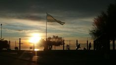 Una buena mañana -  Las toninas  -  Playa Unión Rawson Chubut Argentina.-