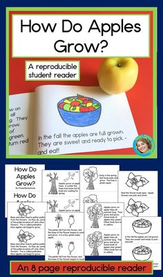 This apple emergent reader book is an awesome activity for elementary students learning about life cycles!  Perfect for kindergarten and first grade students it combines language arts and science learning in an easy to prepare reproducible booklet you can read at school and then send home for extra reading practice.  Add this non-fiction booklet to your Johnny Appleseed lesson plans this fall!