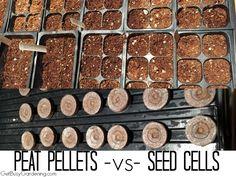 Peat Pellets -vs- Seed Cells