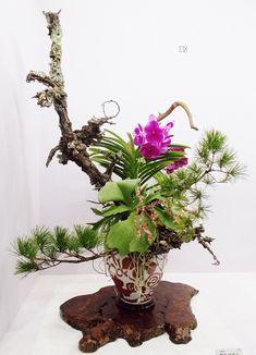 Ikebana, Cylinder Vase, Japanese Art, Bonsai, Flower Arrangements, School, Wood, Flowers, Plants