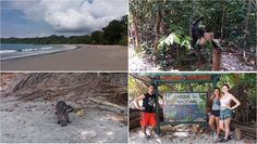 Qué hacer en Costa Rica - Parque Manuel Antonio