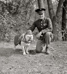 "1925. ""Sgt. Jiggs."" The Marine Corps mascot in Washington, D.C., with an actual Marine. National Photo Company Collection glass negative. Semper Fi HERO"