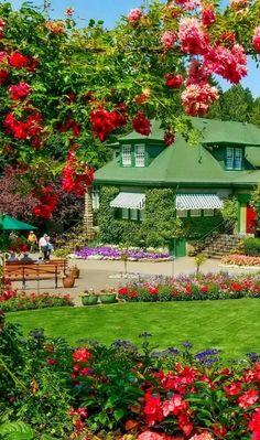 Beautiful Landscape Wallpaper, Beautiful Flowers Wallpapers, Beautiful Photos Of Nature, Beautiful Flowers Garden, Beautiful Places To Travel, Beautiful Roses, Beautiful Landscapes, Beautiful Pictures, Flower Garden Images