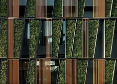 Zero-carbon city apartment complex for Adelaide
