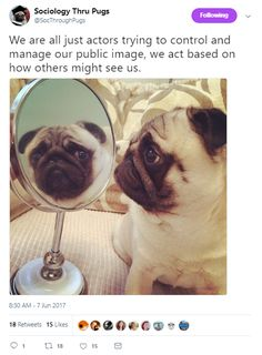 """We are all just actors trying to control and manage our public image, we act based on how others might see us. Sociology, Social Justice, Pugs, Acting, Presentation, Public, Image, Pug, Pug Dogs"
