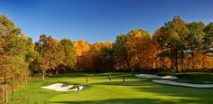 Great Fall Golf at Shepherd's Hollow - Truly #PureMichigan