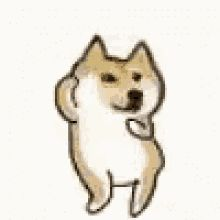 The perfect Doggo Doge Dance Animated GIF for your conversation. Discover and Share the best GIFs on Tenor. Funny Animal Images, Funny Dog Pictures, Animals Images, Animal Memes, Doge Gif, Doge Meme, Dancing Animated Gif, Gif Dance, Dog Tumblr