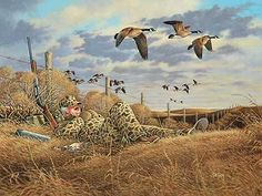 """""""You Snooze You Lose - Goose Hunter"""" by John Wilson Hunting Humor, Hunting Art, Duck Hunting, Hunting Stuff, Wildlife Paintings, Wildlife Art, Duck Pictures, Duck Season, Waterfowl Hunting"""