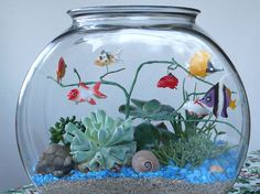 My daughter wanted a fish bowl, with fish, at college. After her roommate killed a fish after a week I decided to make a faux fish bowl with slow growing, hard to kill succulents. Plants In Jars, Fake Plants, Unique Plants, Exotic Plants, Fake Fish Tank, Diy Aquarium, Garden Deco, Succulents Garden, Plant Hanger