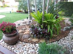 My front yard needs this because nothing will grow, so I'm thinking yard rock anf potted flowers while leaving a little greenery