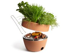 Hot Pot BBQ. The removable top is perfect for growing fresh herbs to season the very food being grilled.