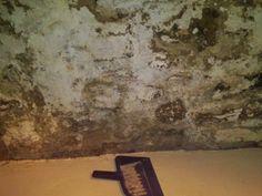 Crumbling old basement walls Basement Flooring Waterproof, Concrete Basement Walls, Dry Basement, Basement Laundry, Basement House, Basement Storage, Basement Stairs, Basement Ideas, Basement Waterproofing