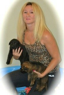 Shadow/Heidi pups 3 1/2 weeks