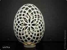 И снова яйцо