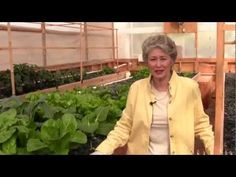 Portable Farms Mineral Rock Dust With Phyllis Davis - YouTube